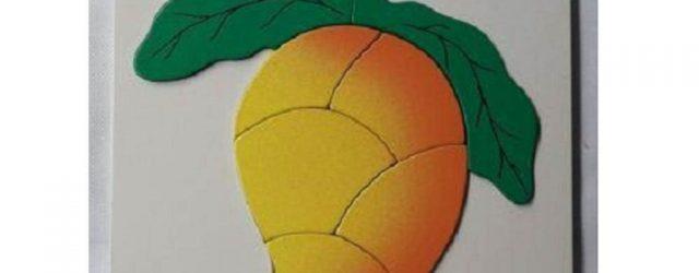 jual mainan puzzle buah mangga anak