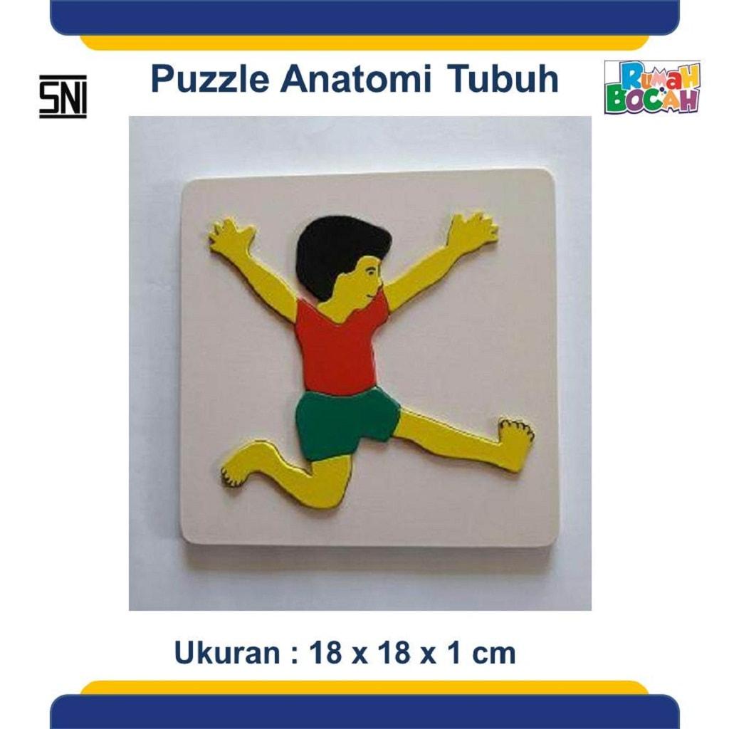 Jual Puzzle Kayu Anatomi Tubuh